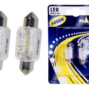 narva-led-c5w-6000k